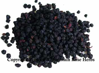 Bilberries Certified Organic & Kosher Certified 1 OZ