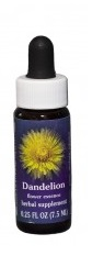 DANELION FLOWER ESSENCE 1/4 oz