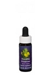 EVENING PRIMROSE FLOWER ESSENCE 1/4 oz